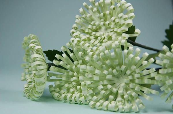 Làm hoa cúc xanh trang trí nhà thêm xinh 11