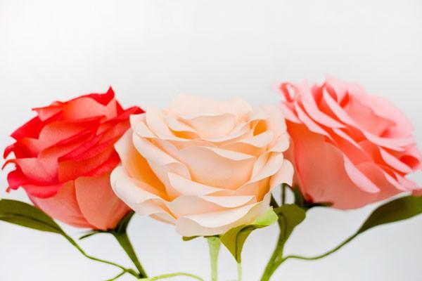 Làm hoa hồng giấy khổng lồ thật ấn tượng 10