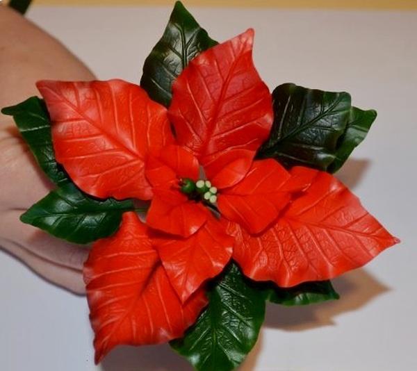 Noel này, trang trí nhà với hoa trạng nguyên thật đẹp! 1