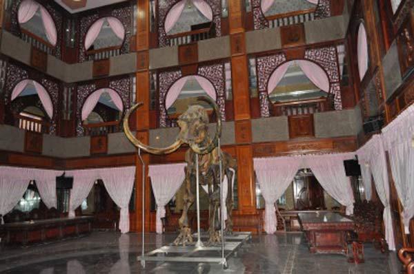 Ngắm những dinh thự hoành tráng của đại gia Việt 14