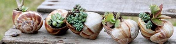 5 ý tưởng thú vị và đơn giản để làm đẹp khu vườn nhà bạn 11