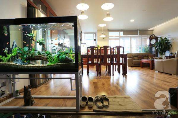 Đầy cảm hứng với căn hộ tràn sắc xanh tại Hoàng Hoa Thám 2