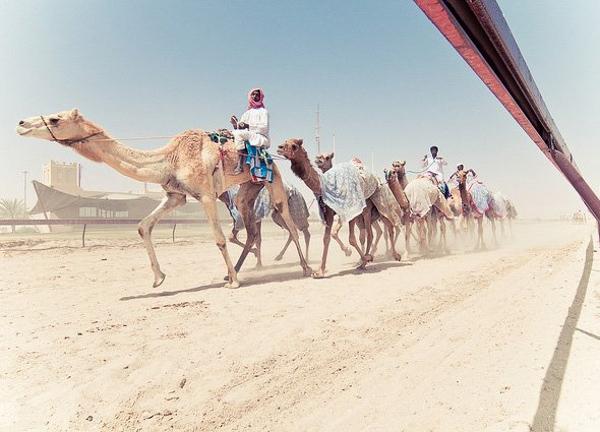 Qatar - đất nước giàu sang và nhàn hạ nhất thế giới 5