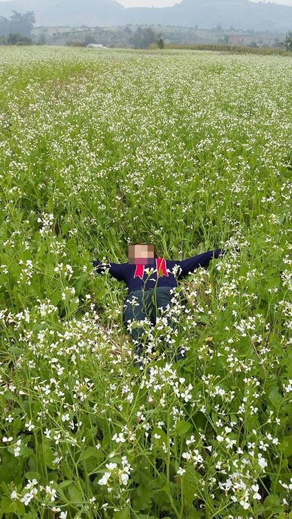Hình ảnh dẫm đạp lên vườn cải trắng tạo dáng chụp ảnh gây bức xúc 4