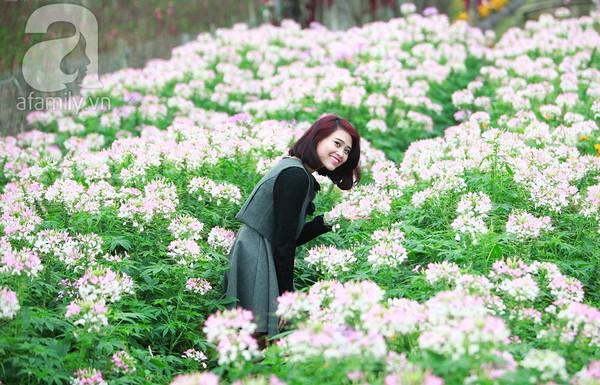 4 địa điểm chụp ảnh với hoa đẹp hút hồn ở Hà Nội 9