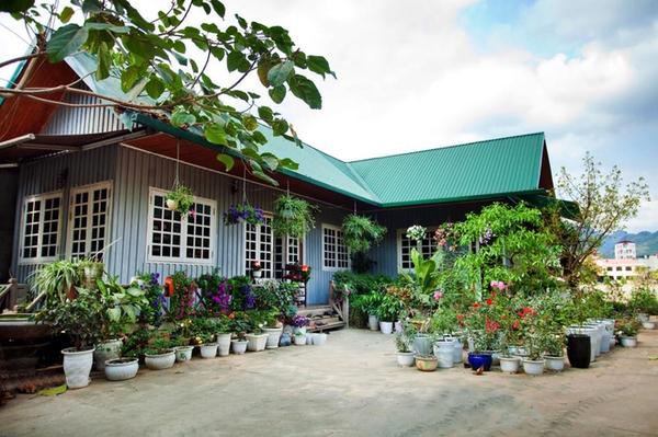 Mê mẩn ngôi nhà gỗ tràn ngập hoa trên cao nguyên đá Hà Giang 2