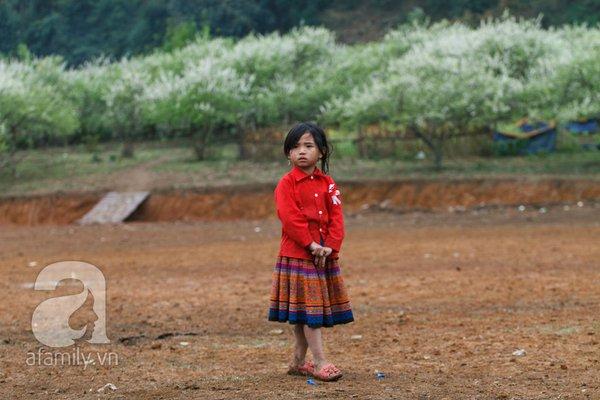 Phụ nữ, trẻ em trong khuôn hình thú vị mùa xuân Mộc Châu 14