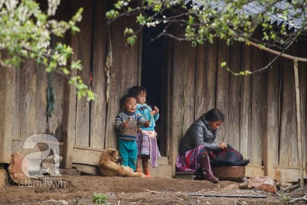 Phụ nữ, trẻ em trong khuôn hình thú vị mùa xuân Mộc Châu 6