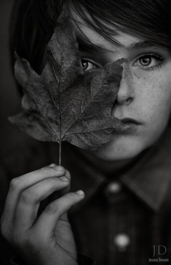 Bộ ảnh mùa thu