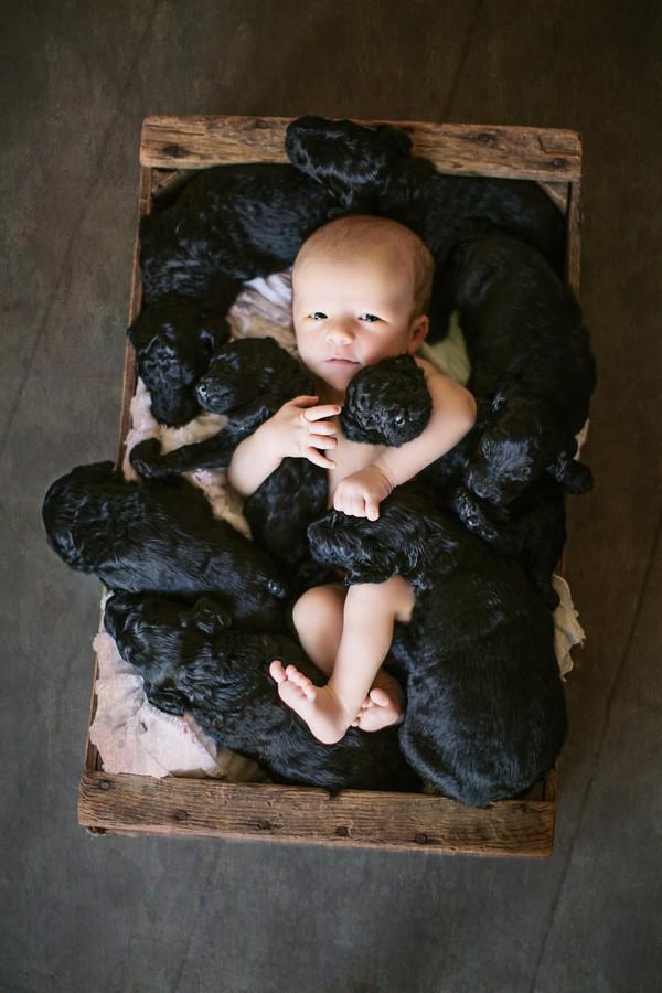 Bé yêu bên cún cưng.