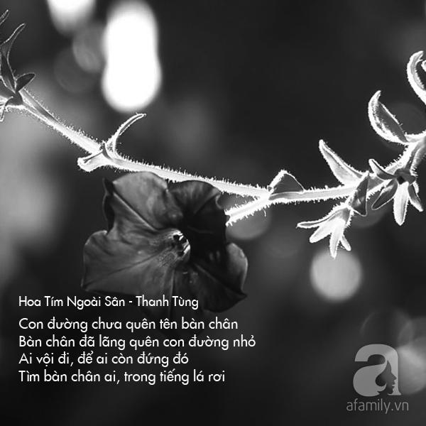 Loi bai hat nhac si Thanh Tung 10