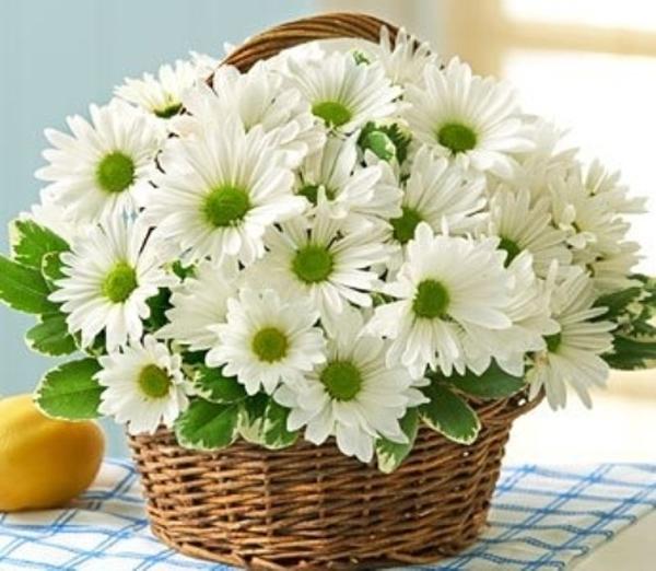 Cách chọn bình và cắm hoa cúc phù hợp với từng không gian sống 7