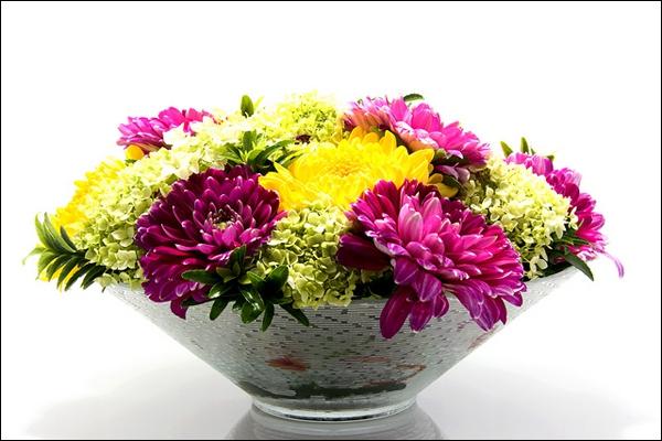 Cách chọn bình và cắm hoa cúc phù hợp với từng không gian sống 3