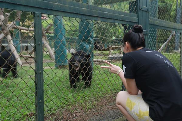 Vợ chồng Thu Minh tay trong tay đi cho gấu ăn 8