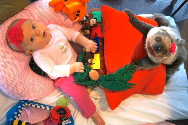 Bộ ảnh đáng yêu về tình bạn của cô bé 5 tháng tuổi và chú thú lười  10