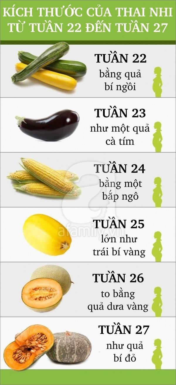 So sánh thú vị về sự lớn lên của thai nhi trong bụng mẹ 5