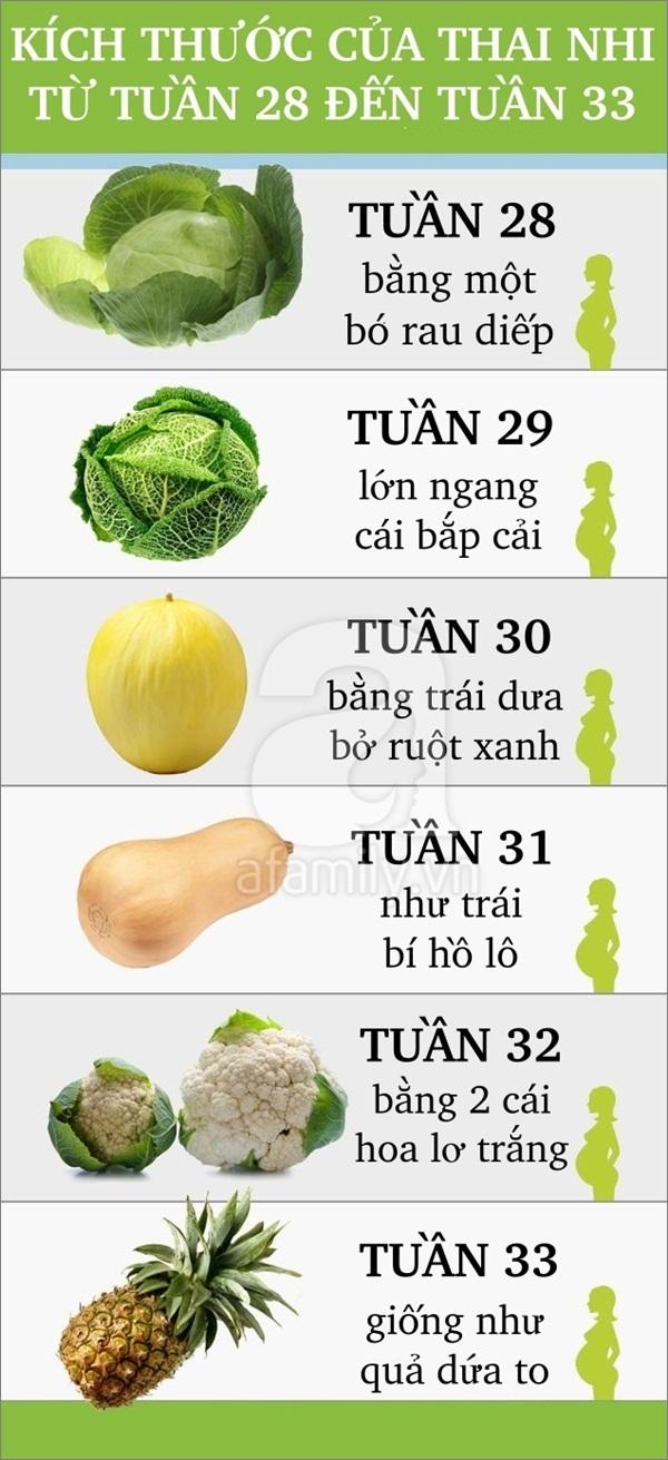 So sánh thú vị về sự lớn lên của thai nhi trong bụng mẹ 6