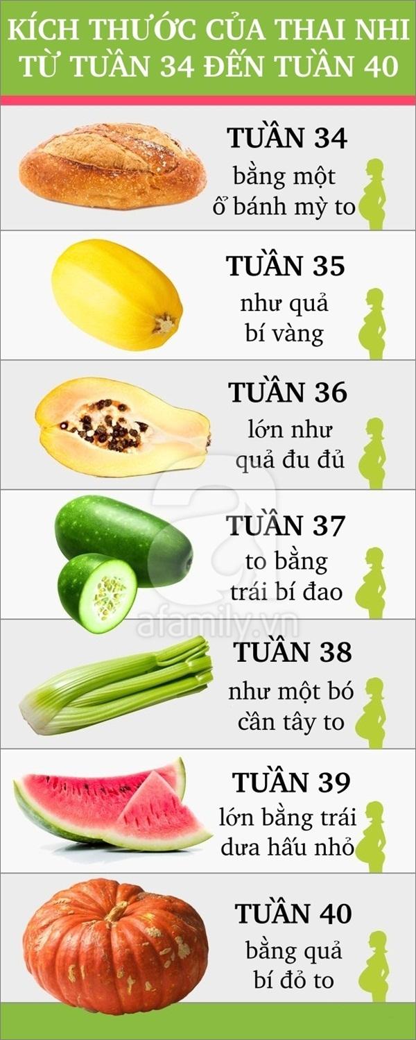 So sánh thú vị về sự lớn lên của thai nhi trong bụng mẹ 7