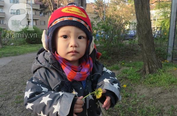 Bố Việt ở Áo 15
