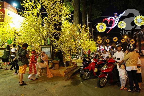 Pháo hoa rực sáng bầu trời chào đón năm mới Ất Mùi 2015 19