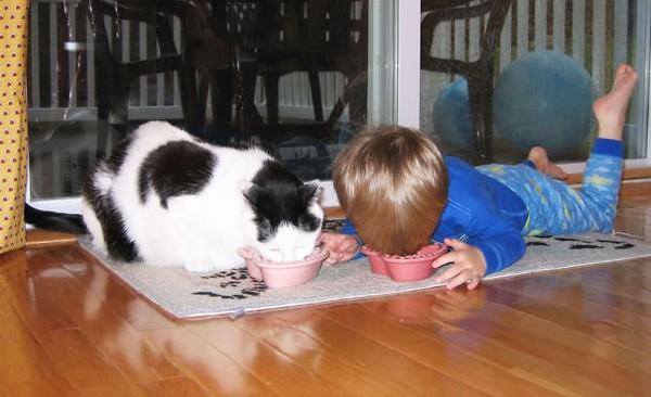 Chùm ảnh bé bắt chước động tác của thú cưng siêu đáng yêu 2