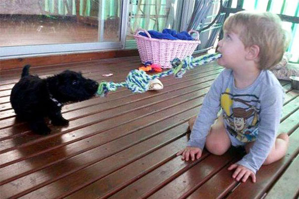 Chùm ảnh bé bắt chước động tác của thú cưng siêu đáng yêu 12