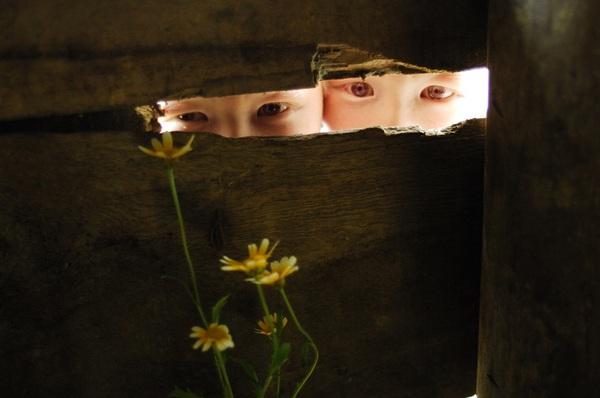 Bộ ảnh độc về thế giới của cặp song sinh bạch tạng ở Hà Tĩnh 14