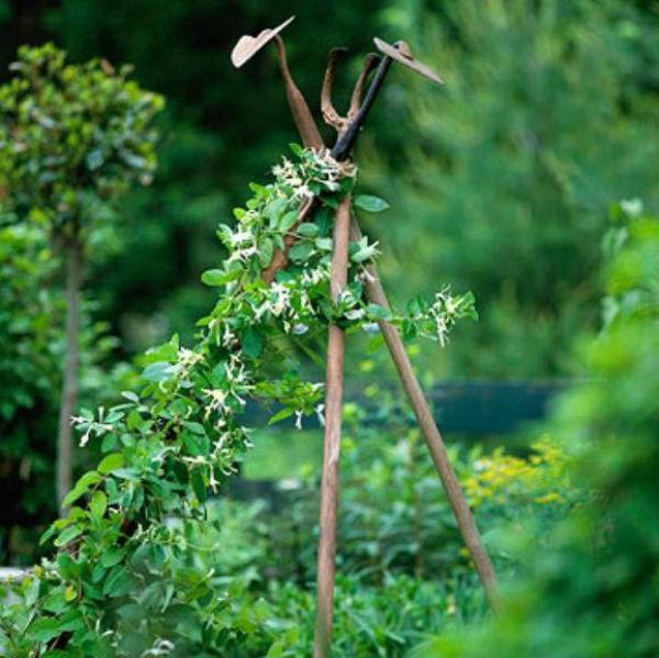 5 ý tưởng thú vị và đơn giản để làm đẹp khu vườn nhà bạn 2