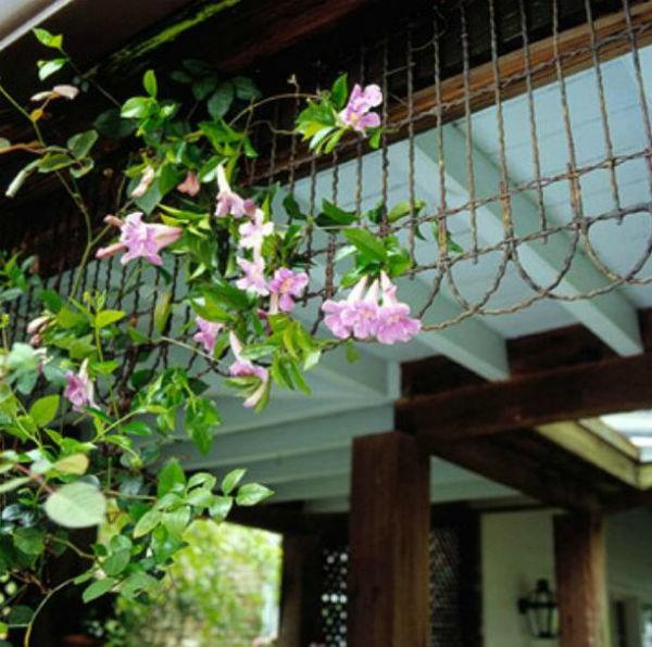 5 ý tưởng thú vị và đơn giản để làm đẹp khu vườn nhà bạn 10