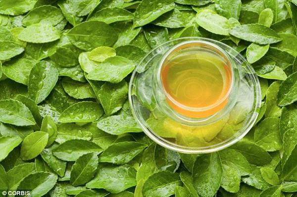 Lý do trà xanh có ưu điểm