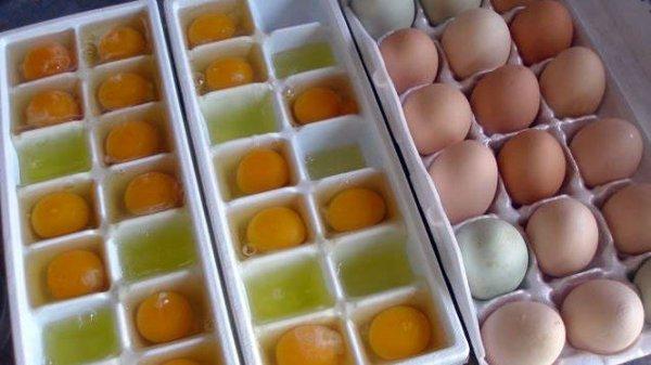 trữ trứng trong khay đá