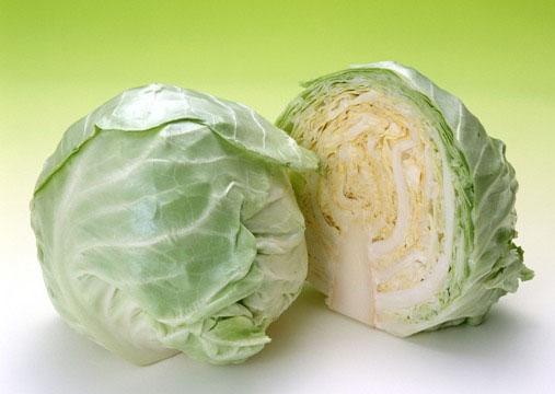 Bắp cải - Cây rau, cây thuốc 1