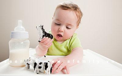 Vì sao 1 tuổi trở đi, trẻ mới được uống sữa bò?