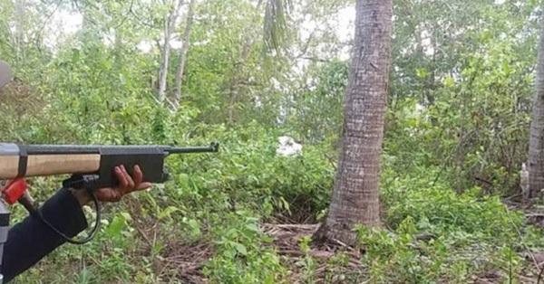 Điện Biên: Đi săn trong rừng, bố bắn nhầm con trai tử vong