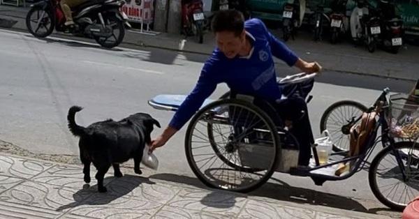 """CLIP: """"Rụng tim"""" với chú chó xoáy Phú Quốc thay chủ tật nguyền xếp hàng nhận gạo"""