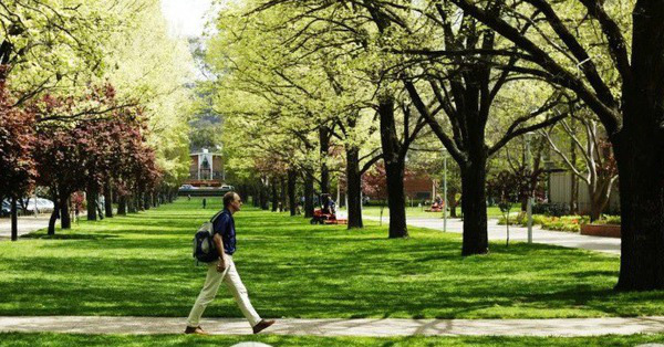 Sinh viên quốc tế có khả năng quay lại Australia vào giữa năm 2021
