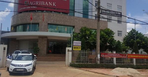 Cho rằng chống dịch tốt hơn tỉnh, Agribank Đắk Nông đưa đoàn ra miền Trung... giao lưu thể thao