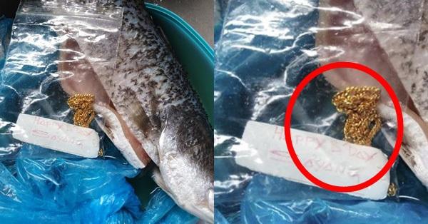Lấy cá trong tủ lạnh ra nấu, người phụ nữ giật mình thấy sợi dây chuyền vàng đính kèm lời nhắn, cư dân mạng được phen ghen tị hết nấc