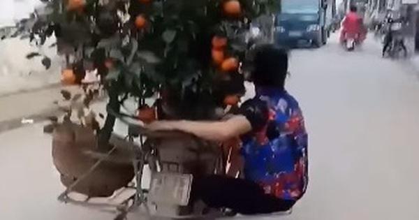 Clip: Người phụ nữ đu bám sau xe máy chở quất Tết để giữ cân bằng khiến cư dân mạng vừa trầm trồ vừa sợ hãi!