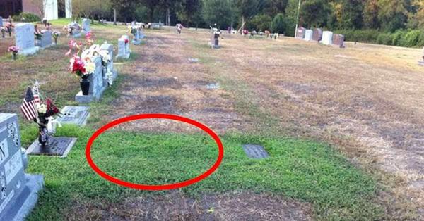 Mộ con trai chết trẻ bất ngờ xanh cỏ, mẹ ngỡ ngàng không hiểu chuyện gì xảy ra cho đến khi sự thật sáng tỏ khiến bà không cầm được nước mắt