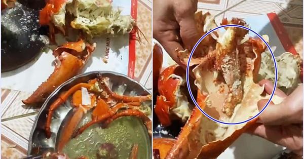Mua tôm hùm Alaska nặng hơn 3kg về ăn mừng sau Tết, cả gia đình buồn thiu khi đập ra toàn thấy vỏ với nước!?