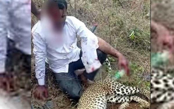 Clip: Người đàn ông dùng tay không giết báo hoang để cứu vợ và con gái