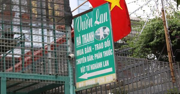 Công an vào cuộc xác minh thông tin chủ vườn lan đột biến ở Hà Nội bỏ trốn cùng hàng trăm tỷ