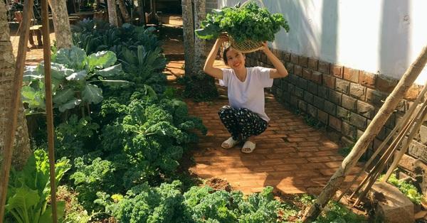 Khu vườn quanh năm tốt tươi rau quả sạch của mẹ mệnh Hỏa ở Đắk Lắk