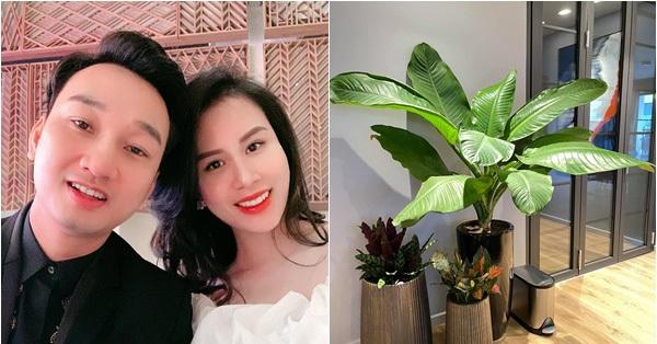 Bà xã MC Thành Trung bỏ 600k mua cây về tự trang trí penthouse 18 tỷ, dân tình