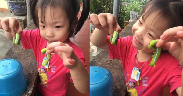 Bé gái cầm 2 con sâu xanh béo mầm trên tay chơi vui vẻ, còn khen chúng dễ thương khiến dân tình muốn