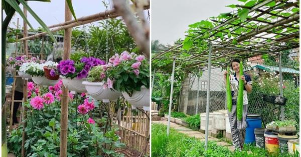 Mảnh đất khô cằn 400m² biến thành khu vườn xanh mát, món quà của con gái dành tặng bố mẹ an hưởng tuổi già ở Hưng Yên