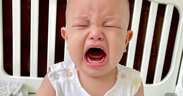 Hài hước cảnh Leon khóc thét, Hồ Ngọc Hà bất lực xin