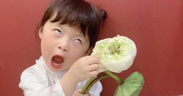 Háo hức rủ cháu gái 3 tuổi chụp ảnh cùng hoa sen, bác gái dở khóc dở cười với cái kết hài
