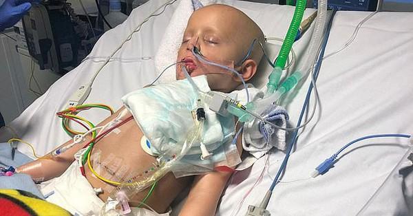 """Mắc bệnh ung thư toàn thân cực hiếm, cậu bé 5 tuổi """"hồi sinh"""" từ cõi chết một cách thần kỳ"""
